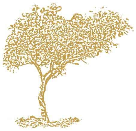 Apothecary - zlatý strom